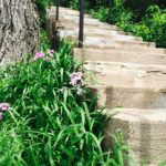 Steps leading to the upper part of the property